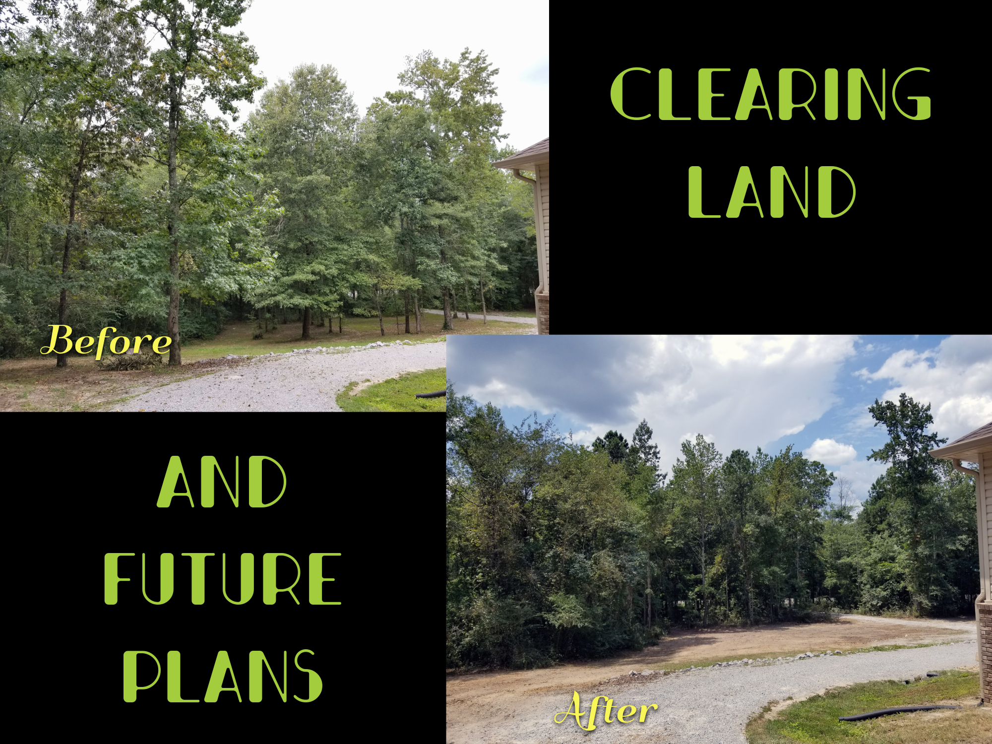 Clearing Land and Plans